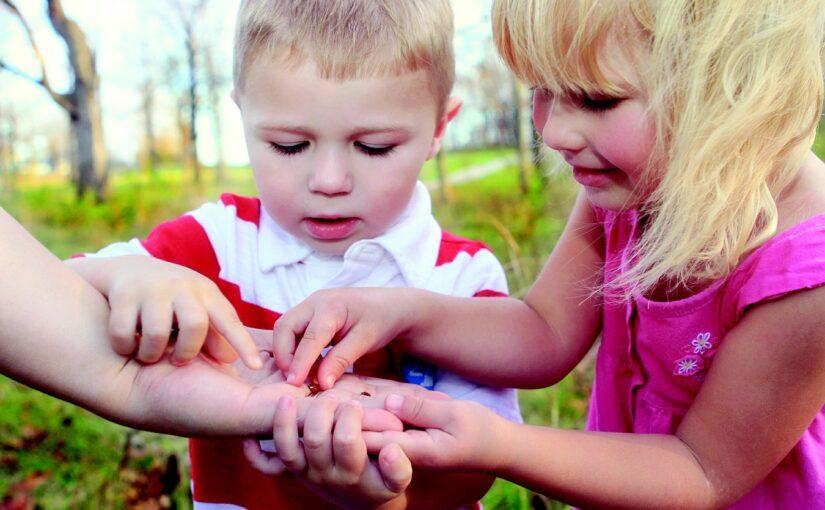 Jak nauczyć dziecko dbania o środowisko – pomysły i porady